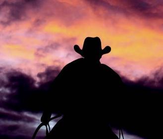 Cowboy New 1